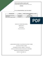 Informe 8 Lab. Quimica