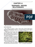 Tardigrades Species Relationships