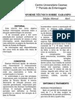 Informe Técnico Sarampo Atualizado