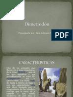 Dimetrodón Investigacion Eras Geologicas