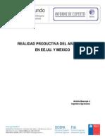 Informe-ArandanoVF21012013