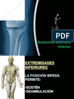 Traumatologia Miembroinferior 130623172633 Phpapp01