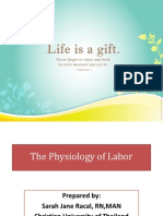 physiologyoflabor-110630033140-phpapp02