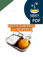 Recetario-Nispero