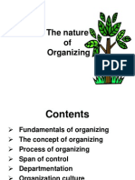 Chapter3 Organizing