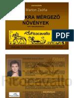 Mergezo Novenyek- Lovasok.hu OldalraKESZ