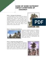 coco leaf nutrient