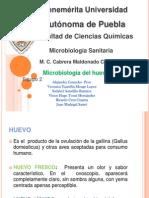 Microbiolog a Del Huevo