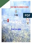 Romeria 2014 en Directo