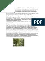 Ecología Acústica