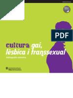 Cultura gai, lèsbica i transsexual