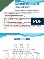 Clase Del Metabolismo Del Glucogeno 2010-II
