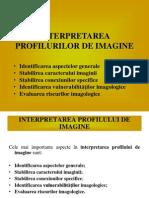 Interpretarea Profilurilor de Imagine