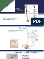 Generalidades y Elementos Celulares en Inmunologia