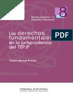 Bernal Pulido, Carlos, Los Derechos Fundamentales en La Jurisprudencia Del TEPJF