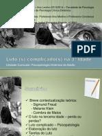 Psicopatologia Dinâmica Do Adulto - Trabalho