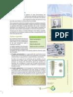 naturales921-120804114807-phpapp02 (1)