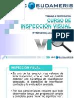 Inspeccion Visual Modulo 1.Revision 1p