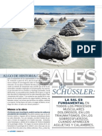 Sales de Shussler