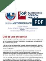 D 2010. Encuestas alcances y límites Lima.pdf