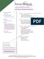 MS Excel Perfectionnement.pdf