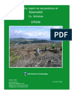 Downshill Excavation Report (2007)