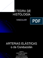 Vascular Lab