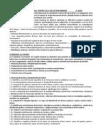 Propósitos de La Enseñanza Del Español en La Educación Primaria