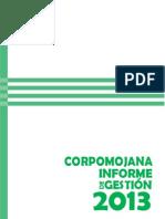 INFORME DE GESTION VIGENCIA 2013.pdf