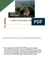 Fondo Nacional Ambiental