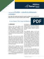 gestaodeportfolioodesafiodoalinhamentoestrategico-090814075833-phpapp01