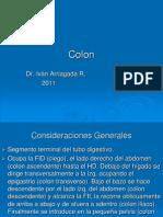 Colon Benigno
