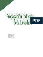Seminario Propagación Industrial de La Levadura