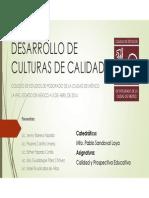 Desarrollo de Culturas de Calidad (Equipo 2)