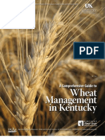 A Comprehensive Guide to Wheat Management in Kentucky