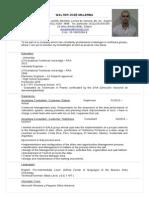 CV Malerba en Ingles