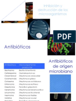 5._Antibioticos
