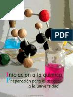 Iniciacion en Quimica