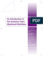 Anatomy Trains Overview