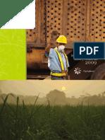 Informe laboral social y ambiental 2009 pantaleón