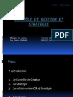 Contrôle de Gestion Et Stratégie 2014