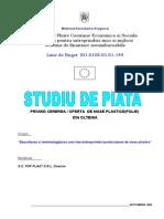 Studiu Piata Mase Plastice