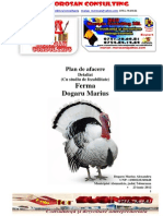 Plan de Afacere Detaliat PDF