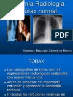 Anatomia Radiologica