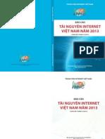 Bao Cao Tai Nguyen Internet 2013