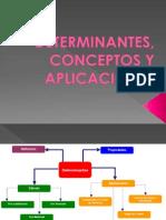 2.1 Determinantes, Conceptos y Aplicaciones