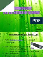 'CHROMOSOME'THE AETHETICS OF GENOME
