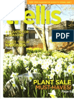 Trellis Magazine Cover Photo of naturalized bed of daffodils at the Toronto Botanical Garden