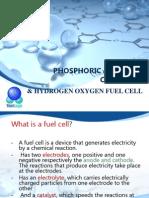 Phosphoric Acid Fuel Cell(Pafc)