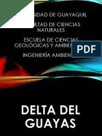 Delta Del Guayas